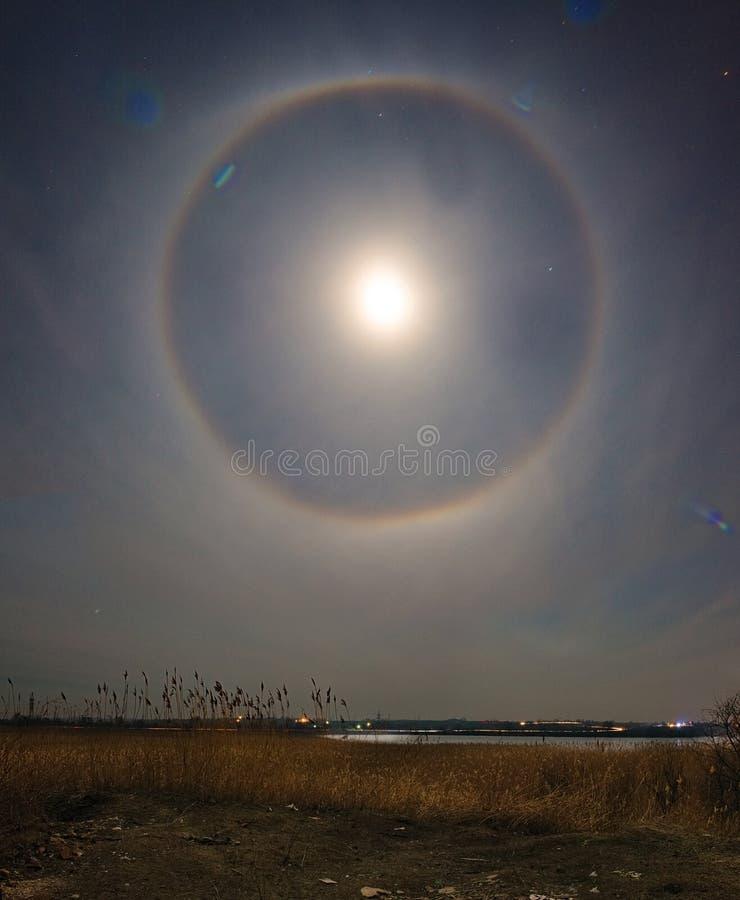 Σεληνιακός φωτοστέφανος πέρα από το τοπίο ricer Βλάστηση καλάμων Τοπίο φωτογραφίας νύχτας στοκ εικόνες