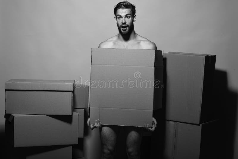 Σεξουαλικότητα και κινούμενη έννοια Ο φορτωτής με το συγκλονισμένο πρόσωπο καλύπτει τη γυμνότητα στοκ εικόνες