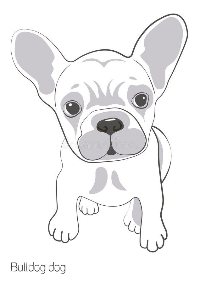 Σε ένα άσπρο υπόβαθρο υπάρχει μια σκιαγραφία ενός σκυλιού μπουλντόγκ Υπάρχει ένα μικρό και χαριτωμένο μπουλντόγκ κουταβιών E διανυσματική απεικόνιση