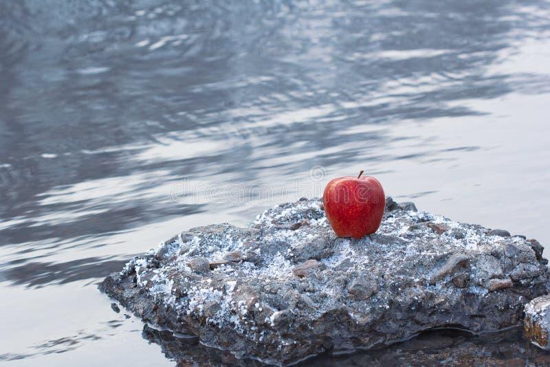 Σε ένα υπόβαθρο ενός κρύου χειμερινού ποταμού υπάρχει ένα μήλο του κόκκινου χρώματος σε μια πέτρα στοκ φωτογραφία με δικαίωμα ελεύθερης χρήσης