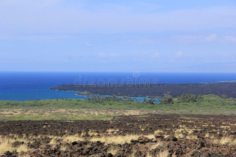 Σε μια παραλία Θάλασσα η άμμος λικνίζει τη φύση της Χαβάης ηλιόλουστη λίμνη φοινίκων στοκ φωτογραφία με δικαίωμα ελεύθερης χρήσης