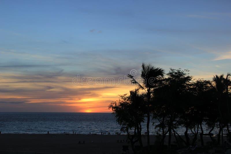 Σε μια παραλία Θάλασσα η άμμος λικνίζει τη φύση της Χαβάης ηλιόλουστη λίμνη φοινίκων στοκ εικόνες με δικαίωμα ελεύθερης χρήσης
