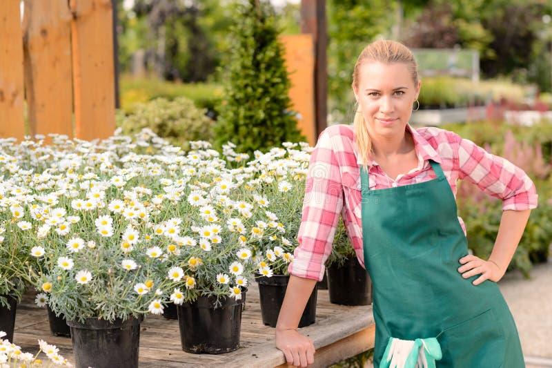 Σε δοχείο λουλούδια μαργαριτών εργαζομένων κεντρικών γυναικών κήπων στοκ εικόνα