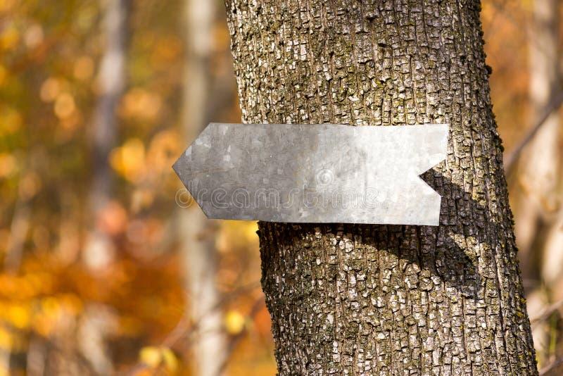 Σημάδι βελών σε ένα δέντρο στοκ εικόνα