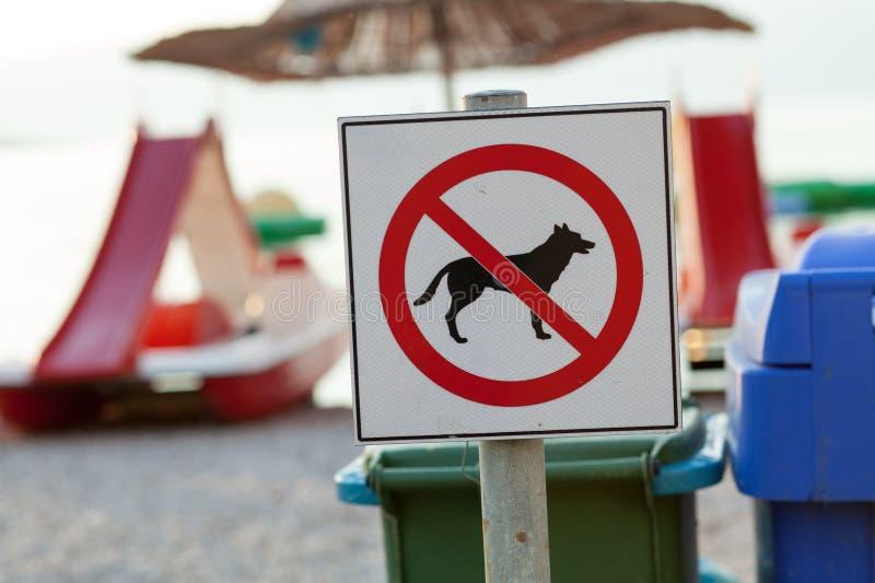 Σημάδια που αναγγέλλουν την απαγόρευση στα σκυλιά στην παραλία στοκ εικόνα