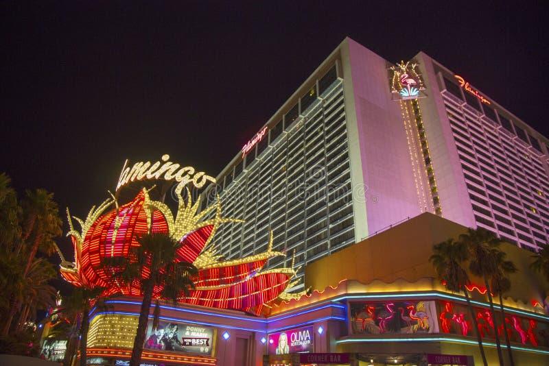 Σημάδι νέου στο μέτωπο του ξενοδοχείου και της χαρτοπαικτικής λέσχης του Λας Βέγκας φλαμίγκο στοκ φωτογραφίες με δικαίωμα ελεύθερης χρήσης