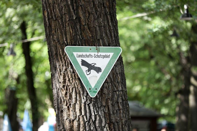 Σημάδι οδών σε ένα δέντρο στοκ φωτογραφίες με δικαίωμα ελεύθερης χρήσης