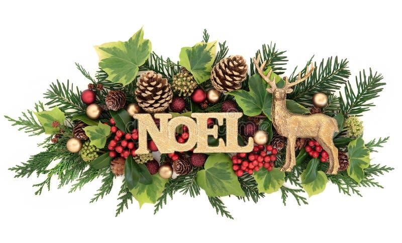 Σημάδι Noel και διακόσμηση χλωρίδας στοκ φωτογραφίες