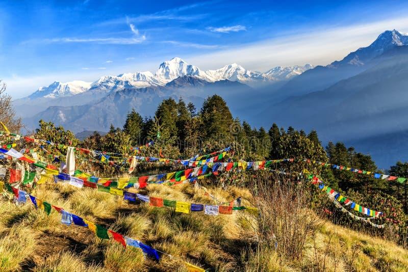 Σημαία προσευχής στο λόφο Poon στο Νεπάλ στοκ φωτογραφίες