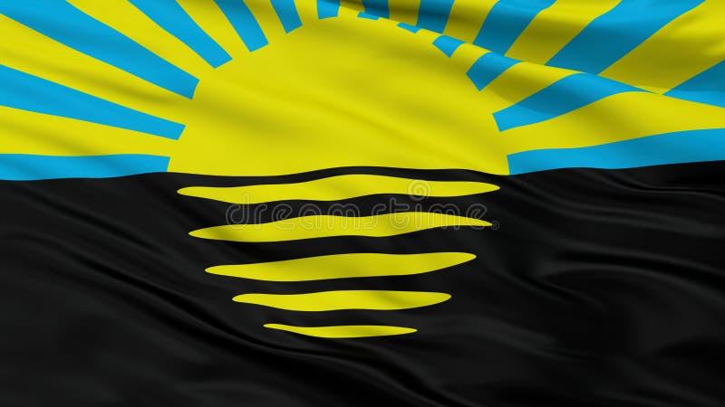 Σημαία πόλεων του Ntone'tsk Oblast, Ουκρανία, άποψη κινηματογραφήσεων σε πρώτο πλάνο ελεύθερη απεικόνιση δικαιώματος