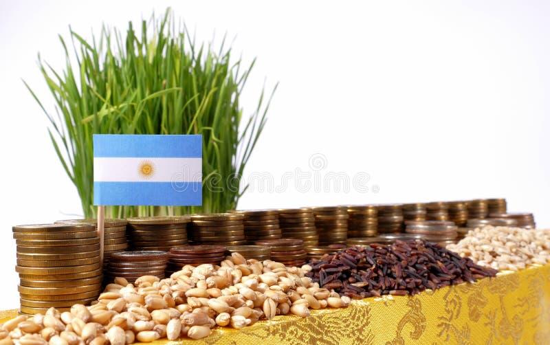 Σημαία της Αργεντινής που κυματίζει με το σωρό των νομισμάτων χρημάτων και τους σωρούς των σπόρων στοκ φωτογραφία με δικαίωμα ελεύθερης χρήσης