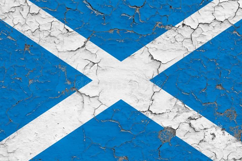 Σημαία της Σκωτίας που χρωματίζεται στο ραγισμένο βρώμικο τοίχο Εθνικό σχέδιο στην εκλεκτής ποιότητας επιφάνεια ύφους διανυσματική απεικόνιση