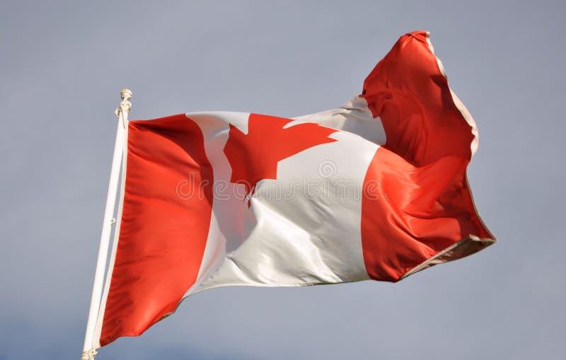 σημαία του Καναδά στοκ εικόνα