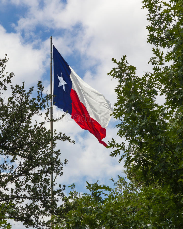 Σημαία του Τέξας σε ένα οκνηρό αεράκι στοκ φωτογραφία με δικαίωμα ελεύθερης χρήσης