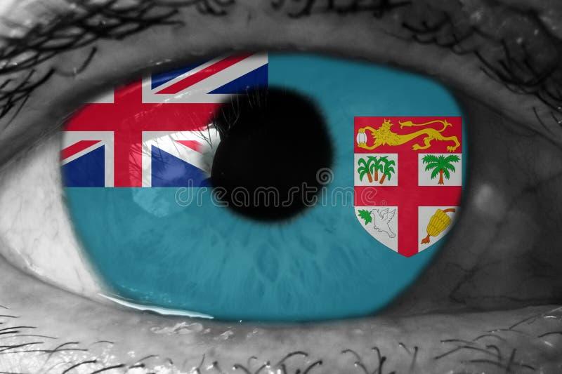 Σημαία των Φίτζι στο μάτι στοκ εικόνες