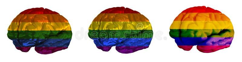 Σημαία LGBT του ανθρώπινου εγκεφάλου απεικόνιση αποθεμάτων