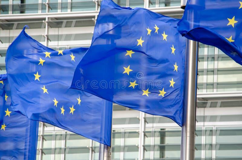Σημαίες της ΕΕ στοκ εικόνες με δικαίωμα ελεύθερης χρήσης