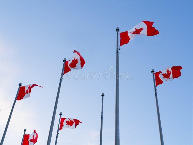 Σημαίες του Καναδά ενάντια στο μπλε ουρανό στοκ εικόνες
