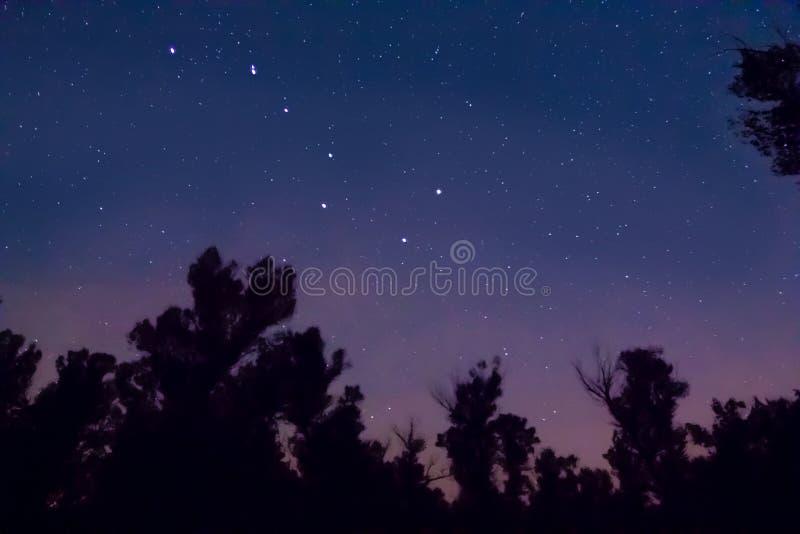 Σημαντικός αστερισμός Ursa στοκ εικόνα με δικαίωμα ελεύθερης χρήσης