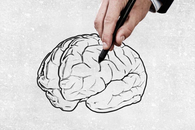 Σημαντικό μυαλό στοκ εικόνες με δικαίωμα ελεύθερης χρήσης