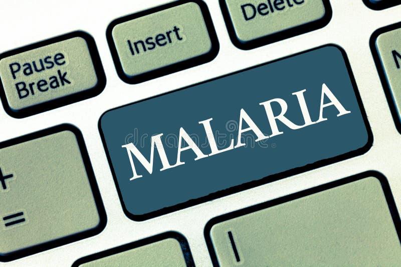 Σημείωση γραψίματος που παρουσιάζει ελονοσία Επιχειρησιακή φωτογραφία που επιδεικνύει τις απειλητικές για τη ζωή μεταδιδόμενες με στοκ εικόνες
