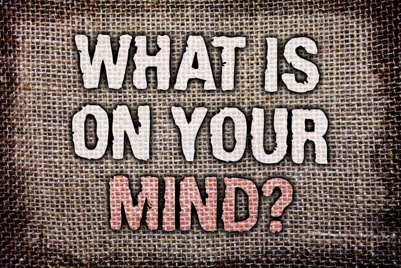 Σημείωση γραψίματος που παρουσιάζει τι είναι στην ερώτηση μυαλού σας Η επιχειρησιακή φωτογραφία που επιδεικνύει ανοικτό που απασχ στοκ εικόνα