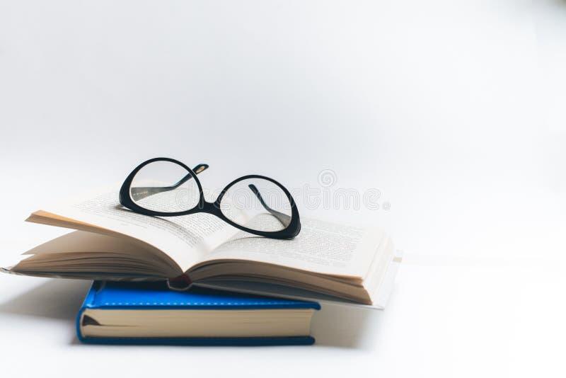 Σημειωματάριο με τα γυαλιά και τη μάνδρα, βιβλίο με τα γυαλιά, μπλε σημειωματάριο στοκ εικόνα με δικαίωμα ελεύθερης χρήσης