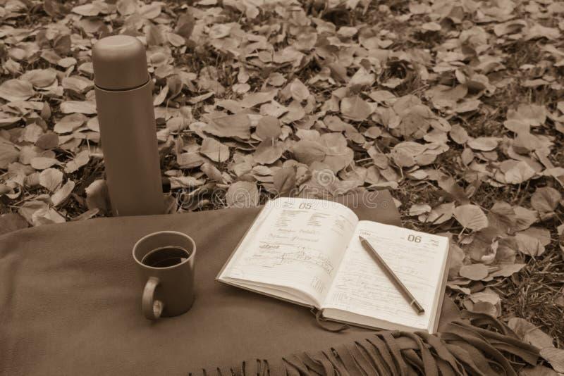 Σημειώσεις σε ένα σημειωματάριο κατά τη διάρκεια ενός πικ-νίκ στοκ εικόνα με δικαίωμα ελεύθερης χρήσης