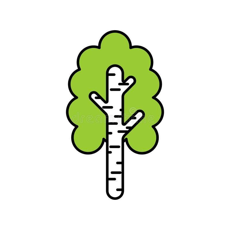 σημύδα που απομονώνεται Εθνικό ρωσικό δέντρο επίσης corel σύρετε το διάνυσμα απεικόνισης διανυσματική απεικόνιση