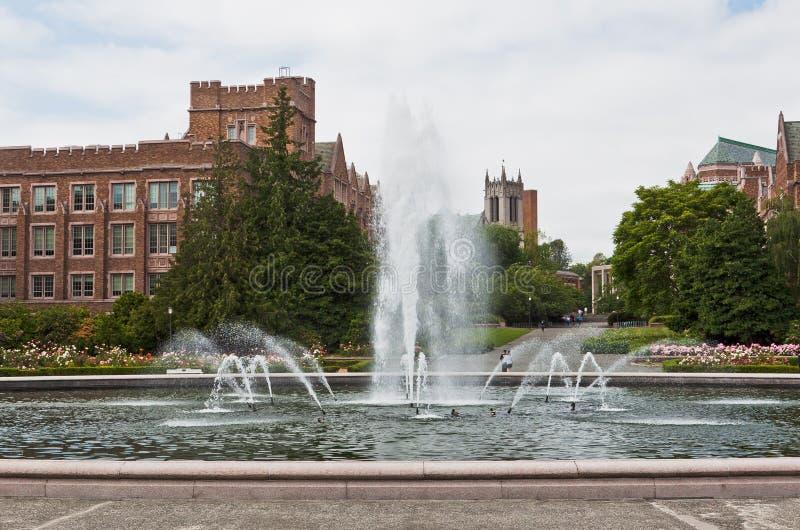 Σιάτλ πανεπιστημιακή Ουά&sigma στοκ φωτογραφία με δικαίωμα ελεύθερης χρήσης