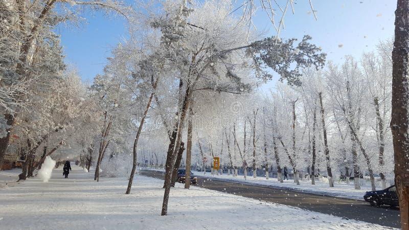 Σιβηρικός χειμώνας στην πόλη στοκ φωτογραφία