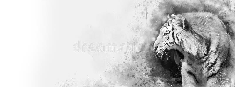 Σιβηρικό έμβλημα μέσων τιγρών γραπτό μικτό διανυσματική απεικόνιση
