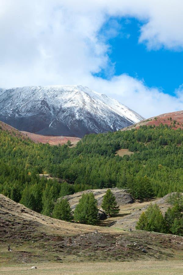 Σιβηρικό taiga βουνών στοκ φωτογραφία με δικαίωμα ελεύθερης χρήσης