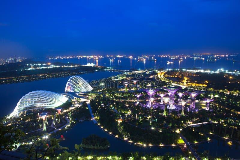 Σιγκαπούρη - 8 Ιουλίου: Τα έξοχα δέντρα στους κήπους από το πάρκο κόλπων, άποψη από τον κόλπο μαρινών στρώνουν με άμμο το ξενοδοχ στοκ εικόνες