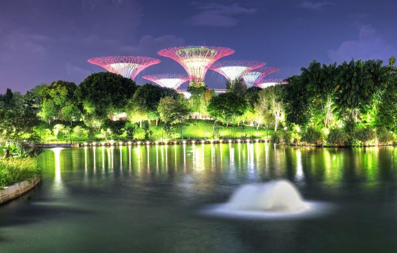 Σιγκαπούρη, Marina bay τη νύχτα - Σούπερ δέντρο με σιντριβάνι στον κήπο στοκ φωτογραφίες