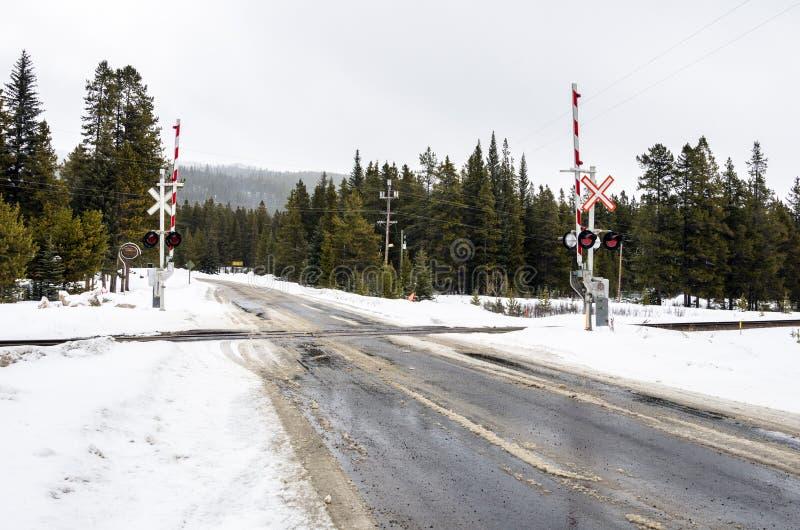 Σιδηρόδρομος που διασχίζει με τα επίπεδα επάνω στο χιονώδες τοπίο βουνών στοκ φωτογραφίες