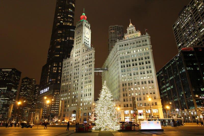 Σικάγο στα Χριστούγεννα στοκ εικόνα με δικαίωμα ελεύθερης χρήσης