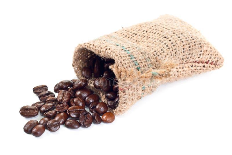 σιτάρια καφέ στοκ εικόνα με δικαίωμα ελεύθερης χρήσης