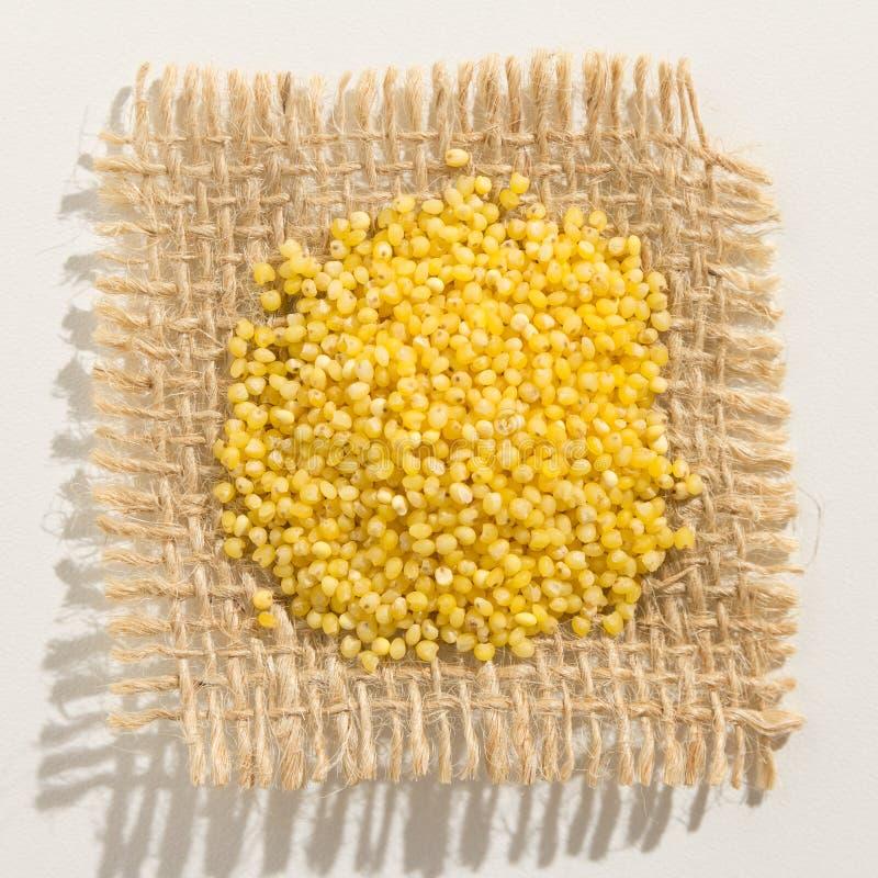 Σιτάρι δημητριακών κεχριού Proso Κλείστε επάνω των σιταριών πέρα από burlap στοκ φωτογραφία