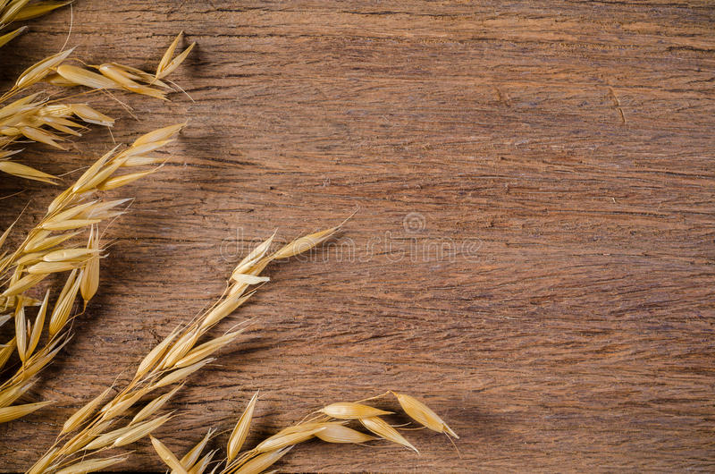 Σιτάρι δημητριακών βρωμών στο ξύλινο υπόβαθρο πινάκων στοκ φωτογραφία με δικαίωμα ελεύθερης χρήσης