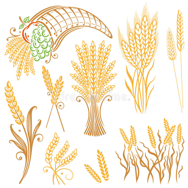 Σιτάρι, καλαμπόκι, αρτοποιείο ελεύθερη απεικόνιση δικαιώματος