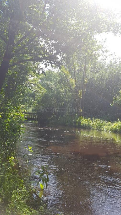 Σιωπηλός λίγη λίμνη στοκ φωτογραφία με δικαίωμα ελεύθερης χρήσης
