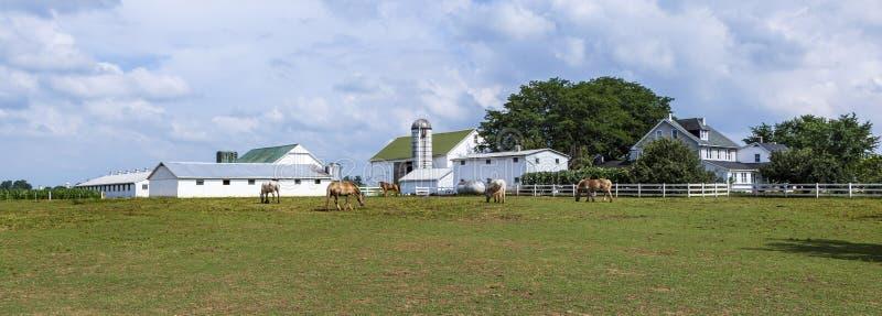 σιλό σπιτιών αγροτικών πεδί στοκ φωτογραφίες με δικαίωμα ελεύθερης χρήσης