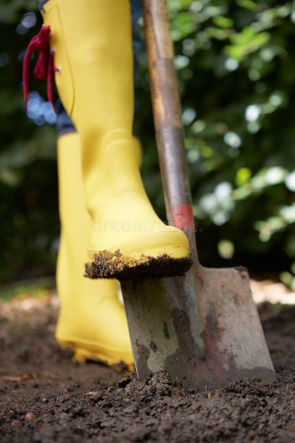 σκάβοντας γυναίκα κήπων σ& στοκ εικόνες
