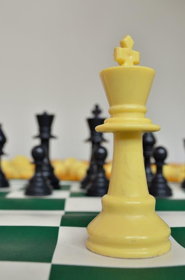 Σκάκι - λευκός βασιλιάς στοκ φωτογραφία με δικαίωμα ελεύθερης χρήσης