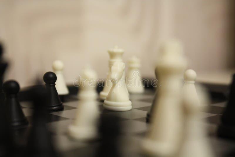 Σκάκι: Λευκός ιππότης στοκ φωτογραφία