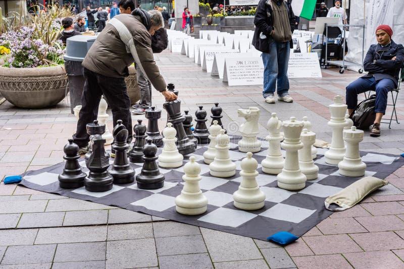 Σκάκι παιχνιδιού στο πάρκο στοκ εικόνα με δικαίωμα ελεύθερης χρήσης