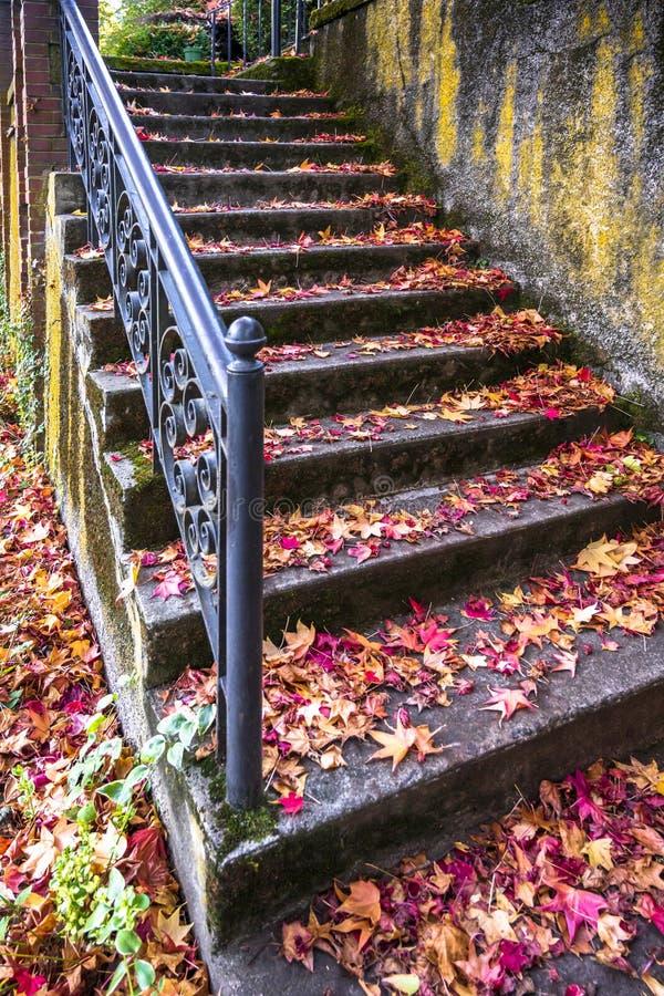 Σκάλα με το χαρασμένο κιγκλίδωμα που σκορπίζεται με τα κόκκινα φύλλα φθινοπώρου του σφενδάμνου στοκ φωτογραφία με δικαίωμα ελεύθερης χρήσης