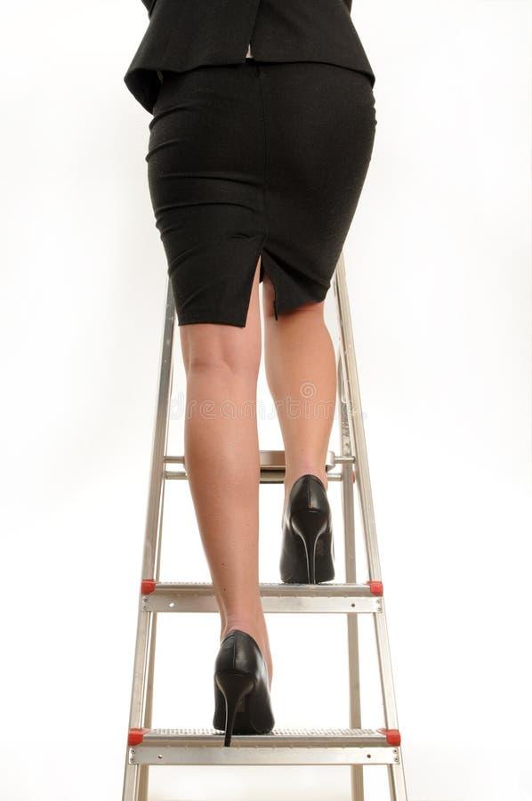 σκάλα σταδιοδρομίας στοκ εικόνες με δικαίωμα ελεύθερης χρήσης