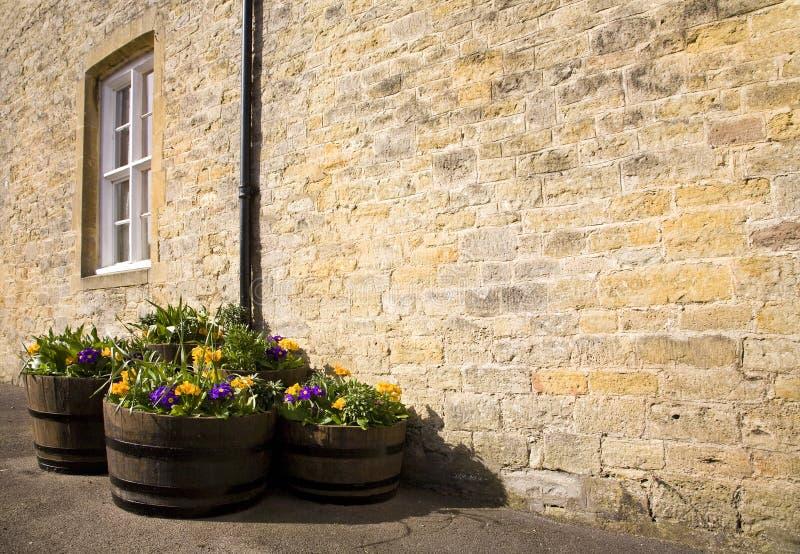 Σκάφες λουλουδιών στον ήλιο στοκ φωτογραφίες